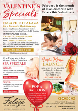 Falaza-February-Specials-v2